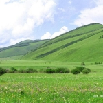 Top 6 Grasslands in China with Google Earth Links
